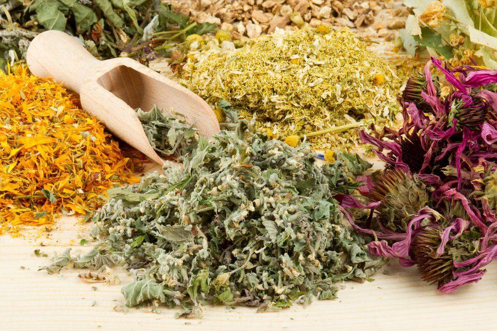 Омолаживающий травяной сбор для женщин: очищает организм и заряжает энергией