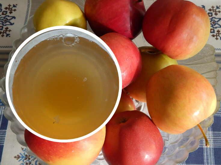 Делаем яблочный уксус из свежего урожая: два простых рецепта. Очень полезный уксус, рекомендуем всем!