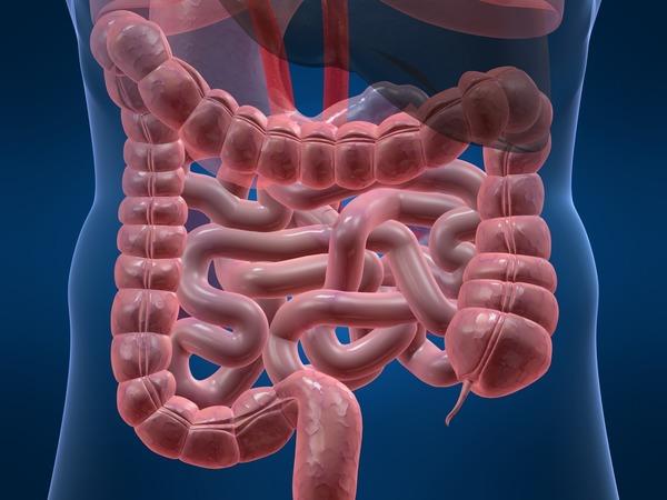 Проблема заложенности вашего носа в кишечнике
