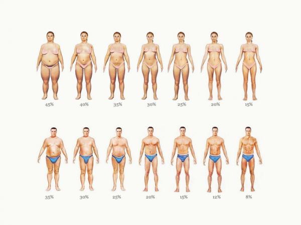 Сушка тела — диета убирающая до 15 кг!