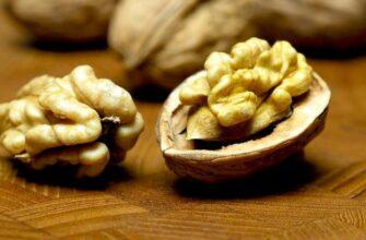 Почему грецкие орехи нужно есть каждый день