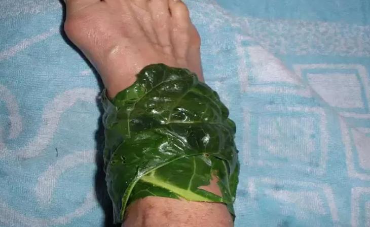 Капуста — лучшее народное средство для лечения воспалённых суставов: 4 простых способа