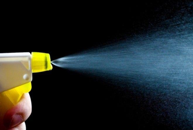 Распылите это в вашем доме, и вы избавитесь от мух, тараканов или комаров всего за 2 часа