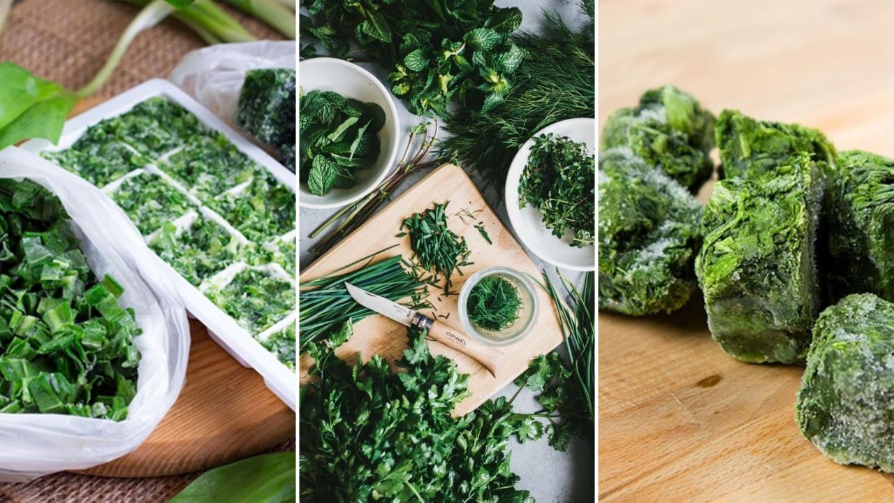 Как правильно замораживать овощи на зиму. Советы которые помогут сохранить витамины и вкус.