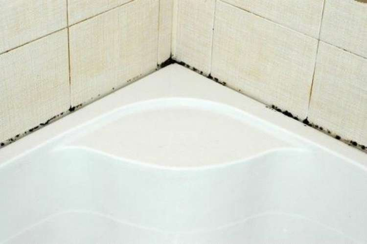 Надоела плесень в ванной?