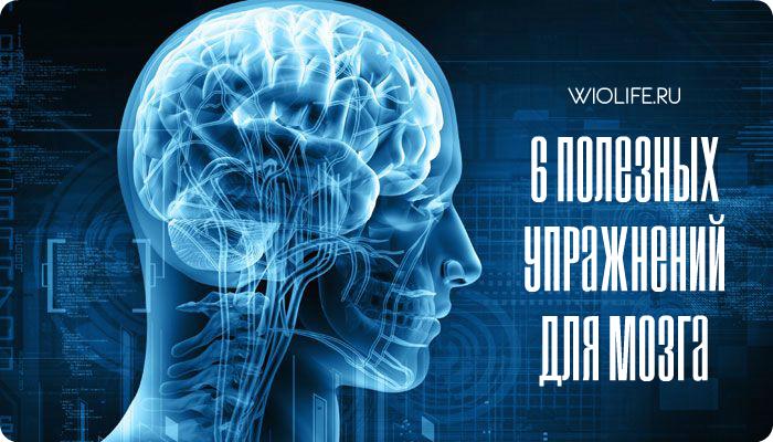 Тренируем извилины. 6 полезных упражнений для мозга