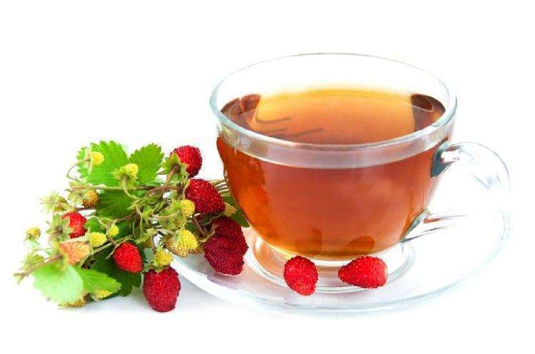 Травяные чаи: какие бывают, когда какие пить и с чем сочетать