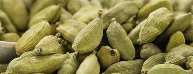 Вот как правильно употреблять кардамон и избавиться от 15 проблем со здоровьем
